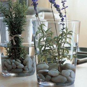 Jarrones de cristal decorativos conchi decoraci n for Jarrones de vidrio decorados
